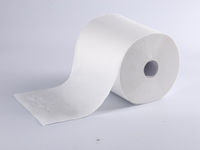 Disposable Roll Hand Towel/Hand Towel/Paper Roll Towel in 100% Virgin
